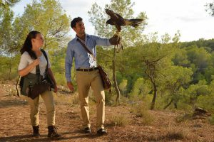 Las Colinas International Falconry School, Orihuela Costa, Spain