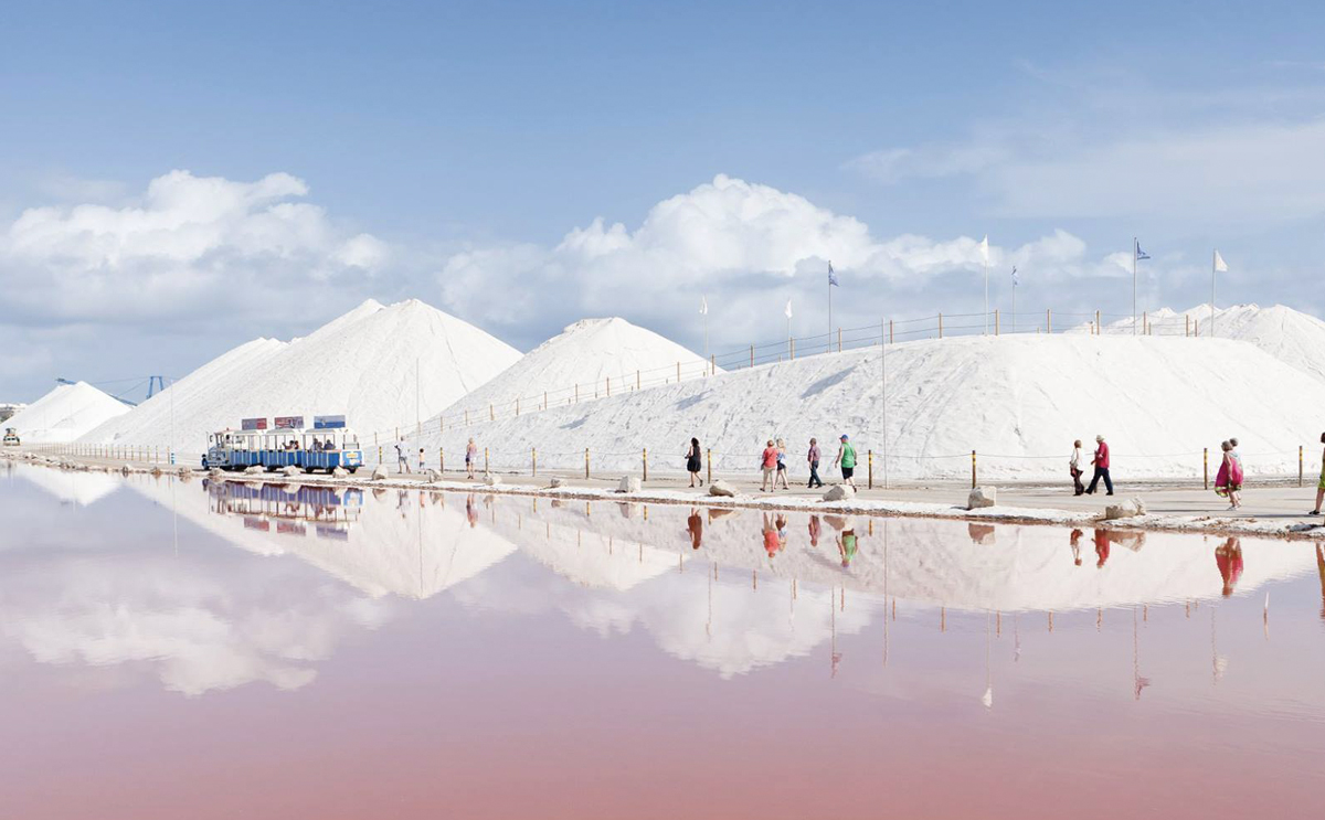 Torrevieja salt lake tours and flamingos