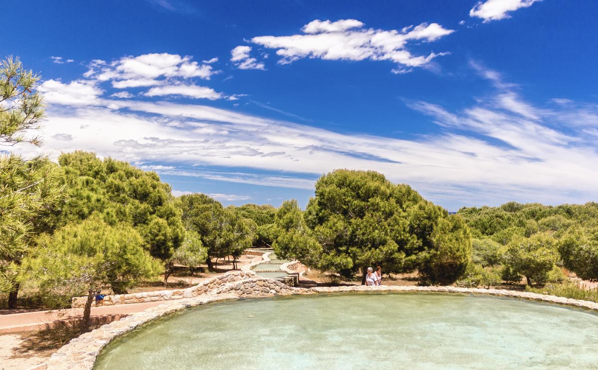 Parque del Molino del Agua, Torrevieja